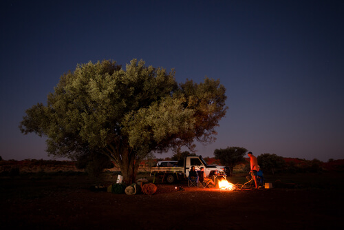 People camping by a tree on their Outback Queensland road trip