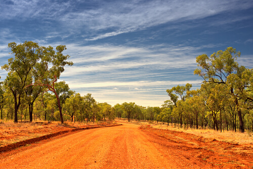 dirt road in Outback Queensland