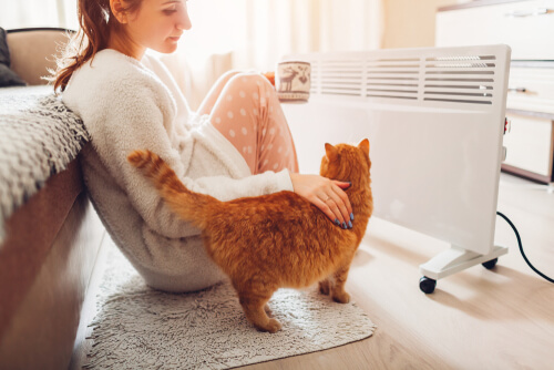 woman with pet cat and coffee mug sitting in front of heater