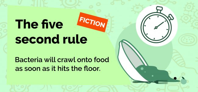 The five second rule is false.
