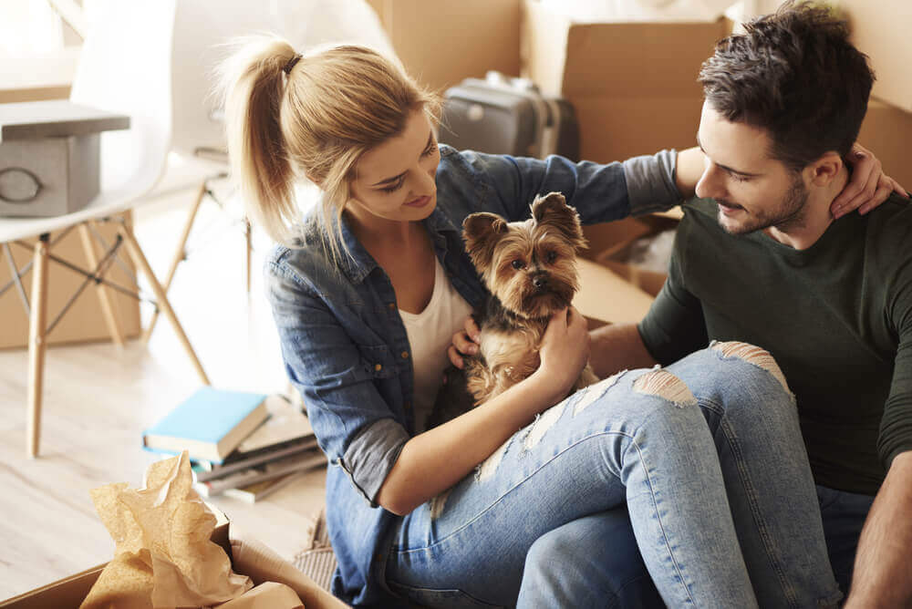 A couple petting a yorkshire terrier dog.