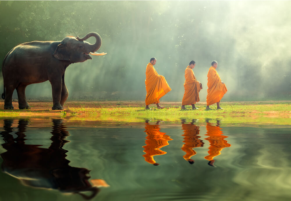 Asian tourism with elephants