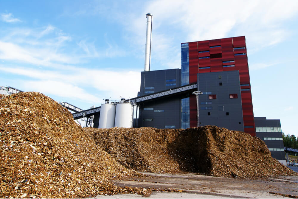 biomass ready to be turned into energy at power plant