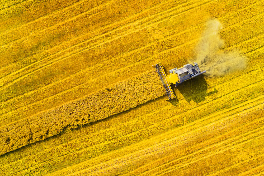 a combine harvester gathering biomass to create green energy