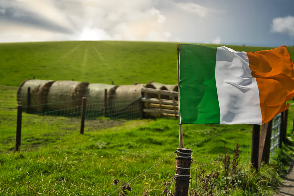 Ireland flag in a countryside fence