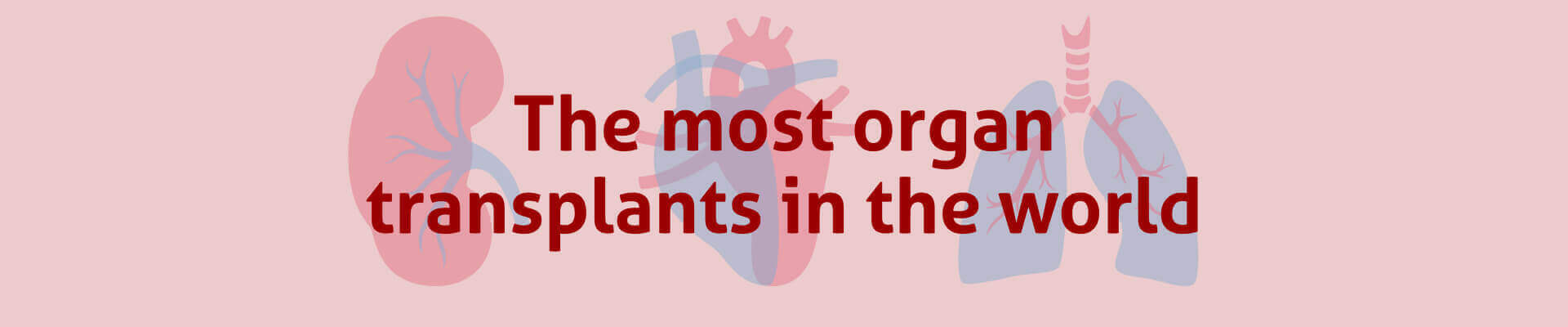 The most organ transplants in the world